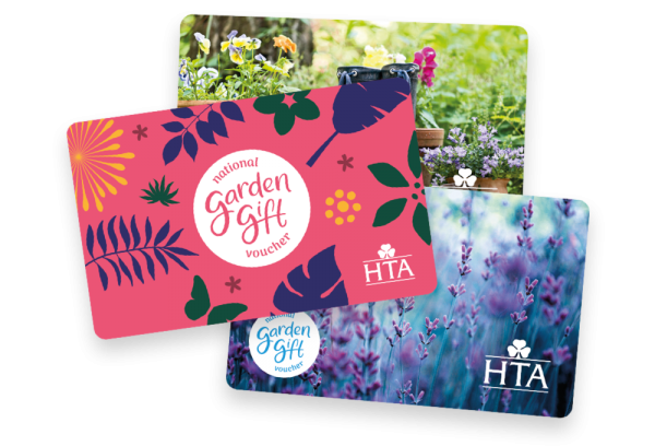 gift_cards HTA