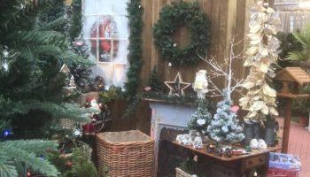 christmas gift shop fv 1
